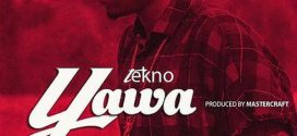 AUDIO + VIDEO : Tekno – Yawa (Prod. by Masterkraft)